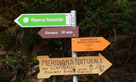 The natural forest reserve